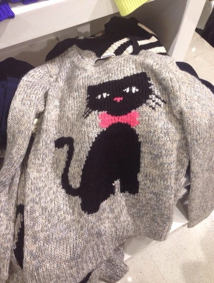 sweater cat sweater cats