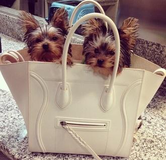 bag white celine paris celine paris handbag