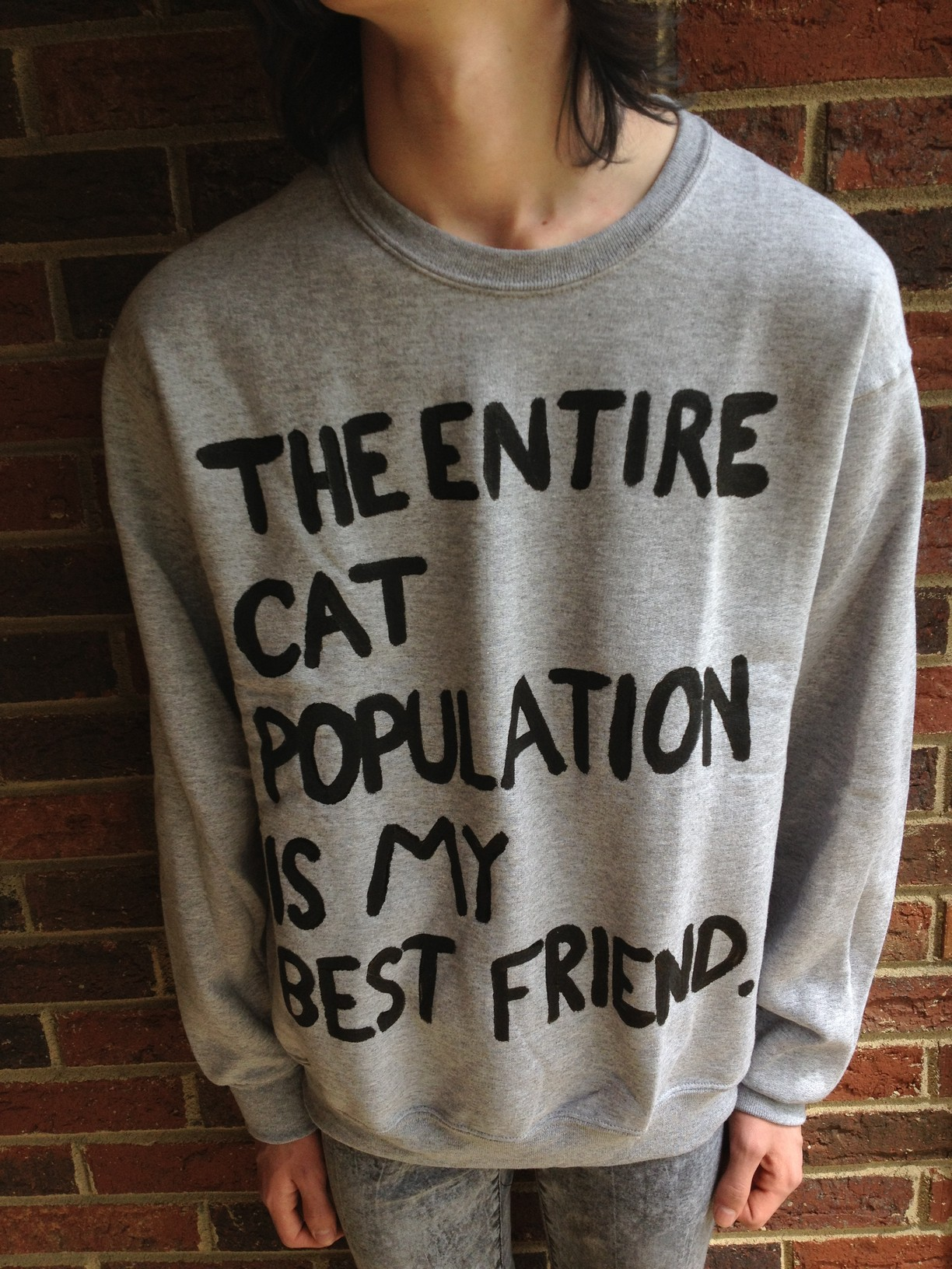 """""""the entire cat population is my bestfriend"""" sweatshirt from crystal bleach on storenvy"""