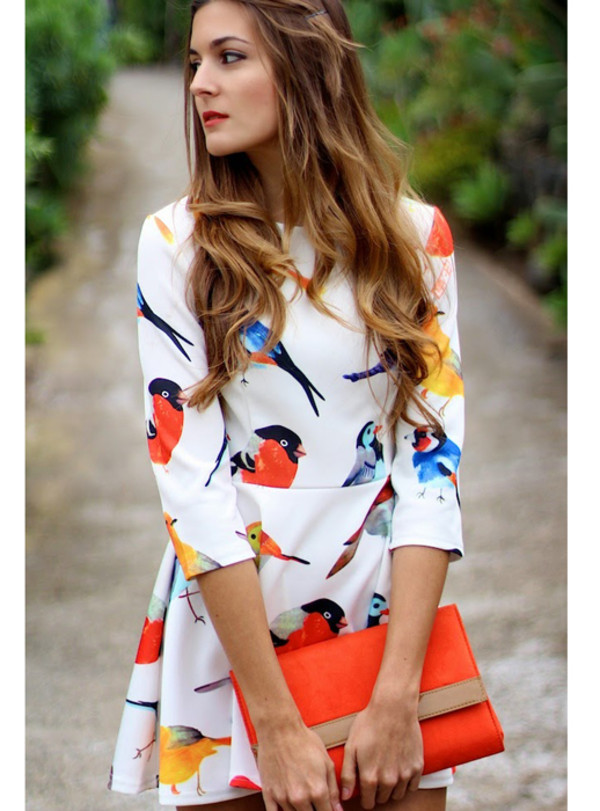 dress dress bqueen fashion girl birds cute lovely chic party summer sweet long sleeves printing temperament