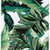 Milly Banana Leaf Print iPhone 5 Case - Free Shipping