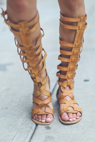 shoes gladiator gladiators nude camel sandals summer shoe boho indie chic trendy on trend summer style knee high gladiator sandals