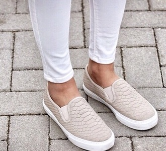 vans indie vogue crocodile beige