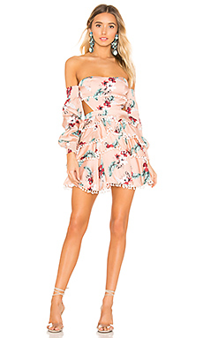 MAJORELLE Soho Mini Dress in Pink Tropical from Revolve.com