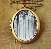 jewels,necklace,locket,bronze,jewelry,accessories