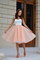 Fairytale collection: ballerina