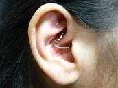 jewels,silver,earrings,heart,cute,piercing