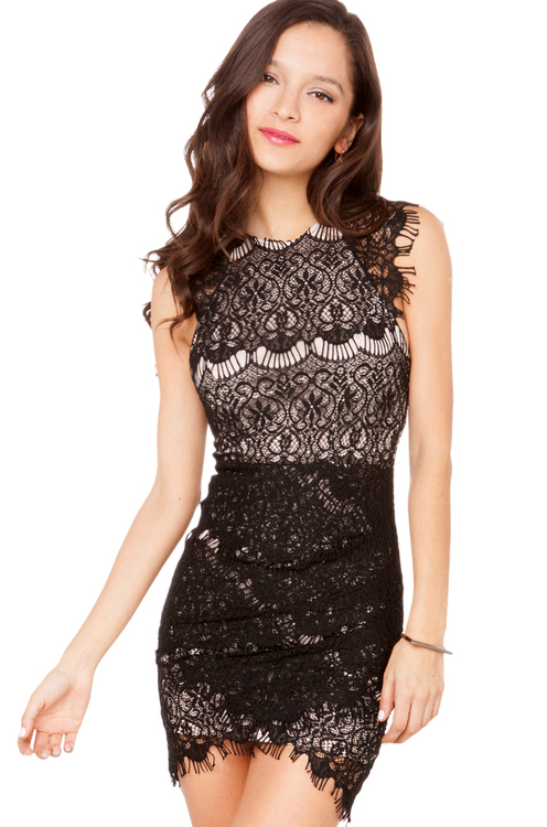 Lovecat Lace Lady Dress in Black
