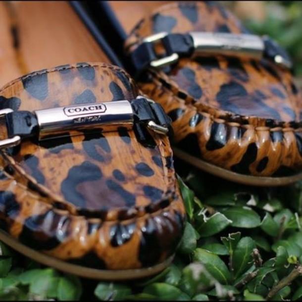 shoes, coach animal print shoes, coach