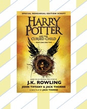 home accessory,book,harry potter,gift ideas