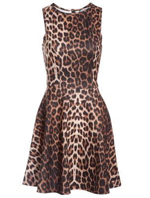 Leopard Print Sleeveless Skater Dress