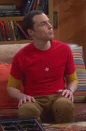t-shirt,sheldon cooper,jim parsons,men t-shirts,big bang theory