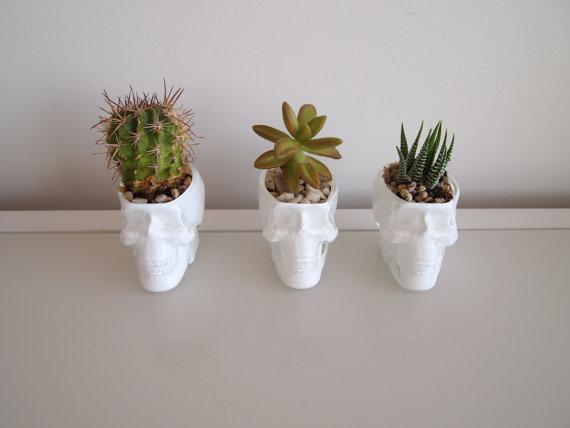 1 x crystal glass white skull planter garden decor for cactus or succulent plant holder vase head