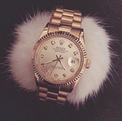 jewels,rolex,gold watch,fluffy
