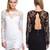 Melissa Lace Bodycon Dress – Dream Closet Couture