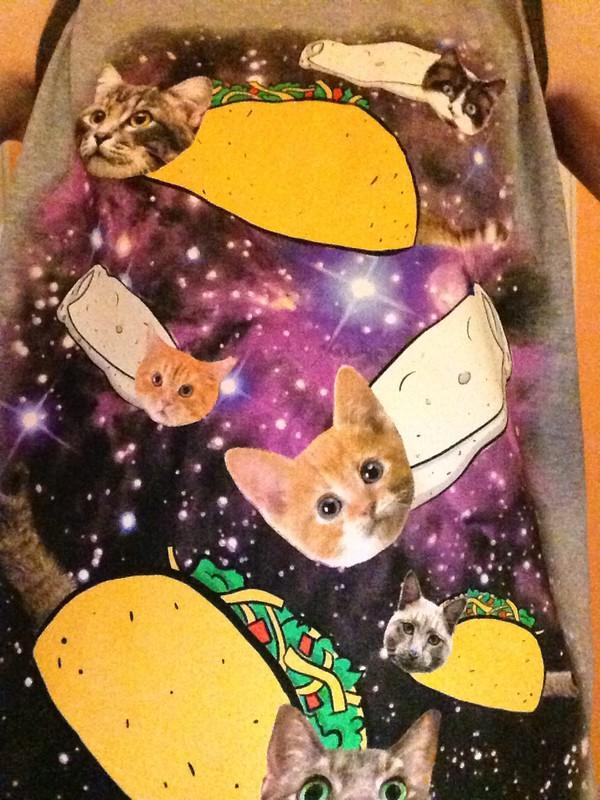 Cute Cat Burrito
