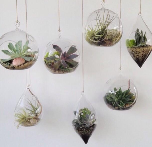 Bag Plants Hanging Home Decor Transparent