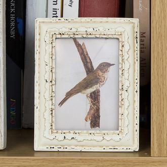 home accessory photo frame classic cream birds gift ideas homeware vintage