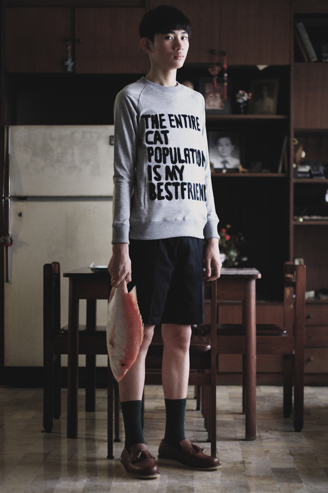 The Balletcats - The Entire Cat Population is My Bestfriend (The original sweatshirt)