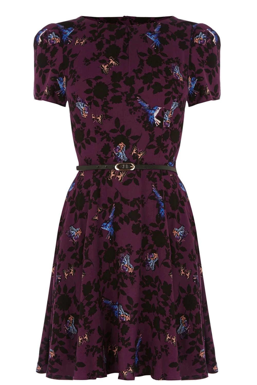 Clothing   Red Shadow Bird Viscose Dress   Oasis