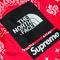 The north face x supreme jacket   bandana mountain jacket   f/w 2014   fw14j2-red