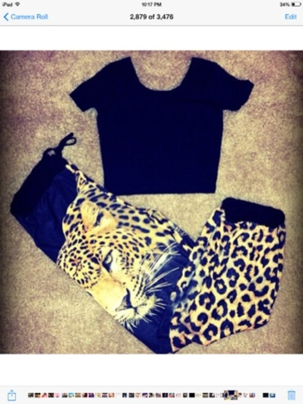 pants sweatpants leopard print leopard print black tiger