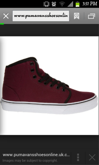 vans burgundy high top
