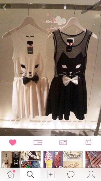 dress cats white dress black dress