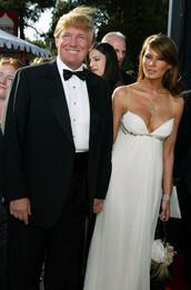 pants,donald trump,menswear,mens suit,mens shirt,mens pants,mens blazer,dress,white dress,cocktail dress,red carpet dress,necklace,jewels,jewelry,melania trump