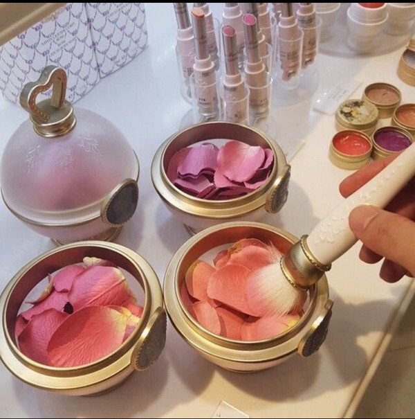 make-up petals roses rose blush brush flowers pink purple orange
