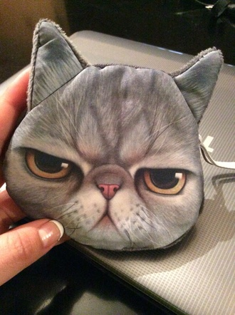 bag cats cat face