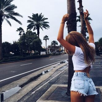 shorts california denim shorts white girl palm tree print beach outfit levi's high waisted shorts