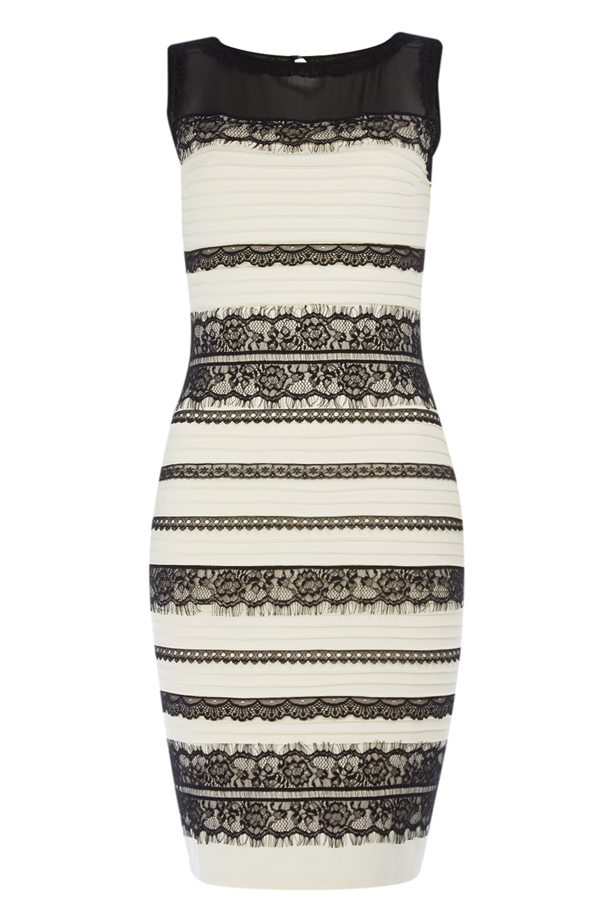 Thedress lace bodycon dress
