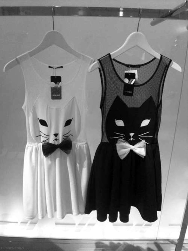 dress cats black white blouse