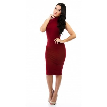 Dressy : sleeveless turtleneck bodycon