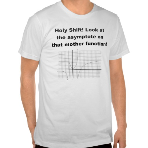 Holy Shift! Look at the asymptote on that function Shirt - Zazzle.com.au