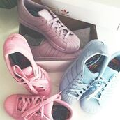 shoes,adidas,fashion,style,adidas superstars,colorful,trainers,peng,adidas trainers,womens trainers,adidas shoes,adidas supercolor,pink sneakers,blue sneakers,purple sneakers,pastel