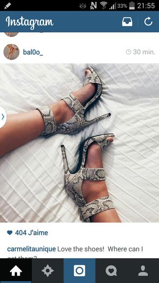 snake chaussures chaussures ? talons chaussures ouvertes shoes open toes serpent snake skinn