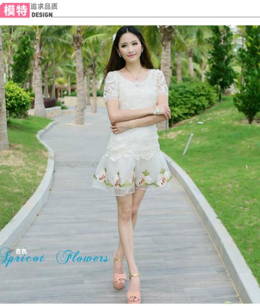 Spring Summer Dress Sweet Flower Embroidery Women Casual Dress Short Sleeve Gauze Lace Ptachwork Elegant Mini Dress | Amazing Shoes UK