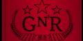 Guns n' roses bullet logo t