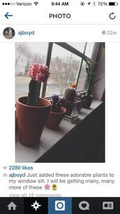 t-shirt,bamboo,ajboyd,cactus,cacti,flowers,flower crown,pink,yellow,orange,green,pot,plants,where did u get that,alien,purple,home decor,navy,heels,cute hand bag
