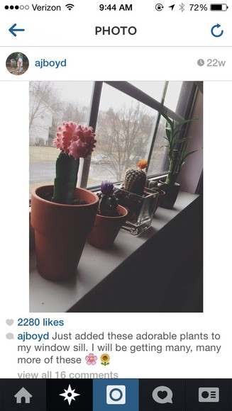 green yellow orange t-shirt bamboo ajboyd cactus cacti flowers,navy blue,heels,cute hand bag flower crown pink pot plant where did u get that alien purple