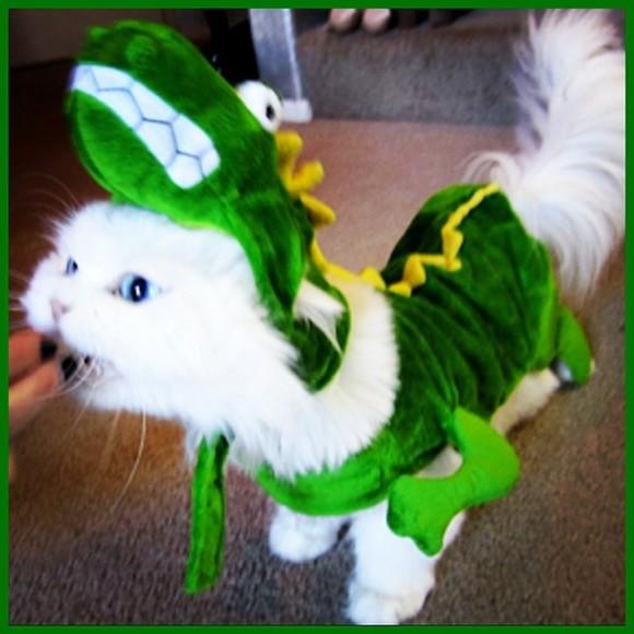 coat animal cats i like cats cats pullover animal costume animal onesies kawaii cute costume funny
