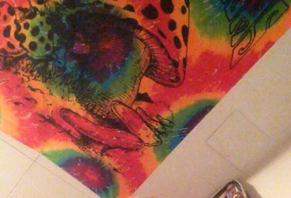 mushroom rainbow trippy type dye