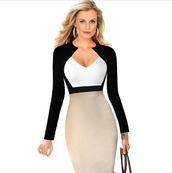 dress,office dress,elegant dress,bodycon,office outfits,black and white,v neck dress