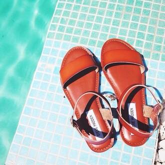 shoes steve madden zooshoo zooshoo shoes steve madden shoes sandals steve madden sandals strappy sandals flat sandals summer shoes spring shoes zooshoo sandals beach shoes