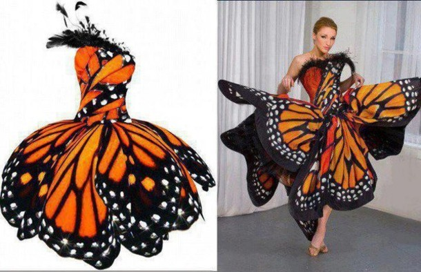 Dress: orange dress, butterfly, papillon - Wheretoget
