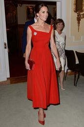 dress,pumps,kate middleton,celebrity,midi dress,gown