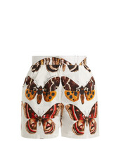 shorts,butterfly,white,cotton,print,brown
