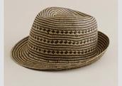 hat,j crew fedora